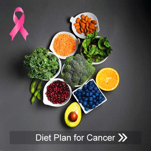 https://www.justforhearts.org/wp-content/uploads/2020/05/Free-diet-plan-for-Cancer.pdf