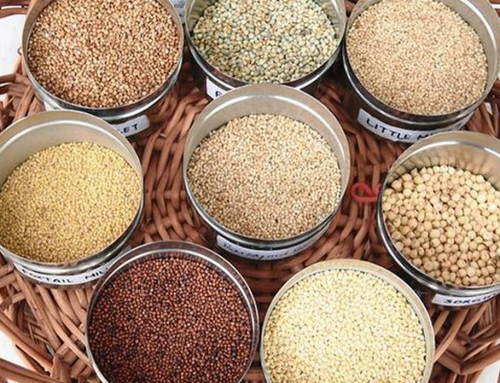 ROLE OF MILLETS IN COVID 19